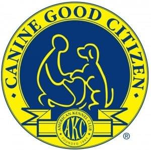 AKC Canine Good Citizen CGC Testing in Providence RI | Spring Forth Dog Academy